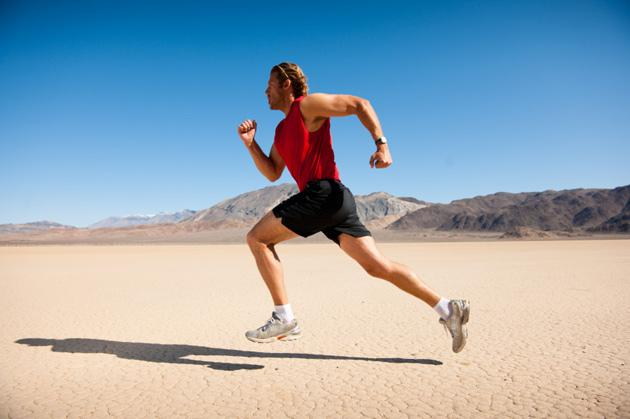 Gallery For > Cardiovascular Endurance